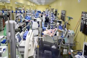 شناسایی ۱۳۵ بیمار جدید مبتلا به کرونا در منطقه کاشان