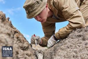 از ساخت پهپادِ سنجاقکی تا کشف فسیل یک میلیارد ساله