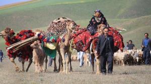 ممنوع بودن کوچ تابستانه عشایر به مراتع آذربایجانشرقی