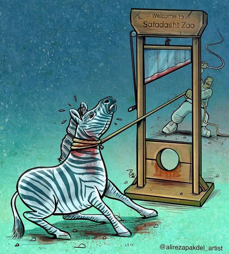 کاریکاتور/ استقبال ویژه از گورخرهای آفریقایی!