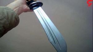 حمله بیرحمانه یک مرد با شمشیر سامورایی به خانوادهاش
