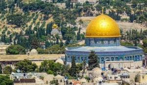 فلسطین؛ از نهر تا بحر
