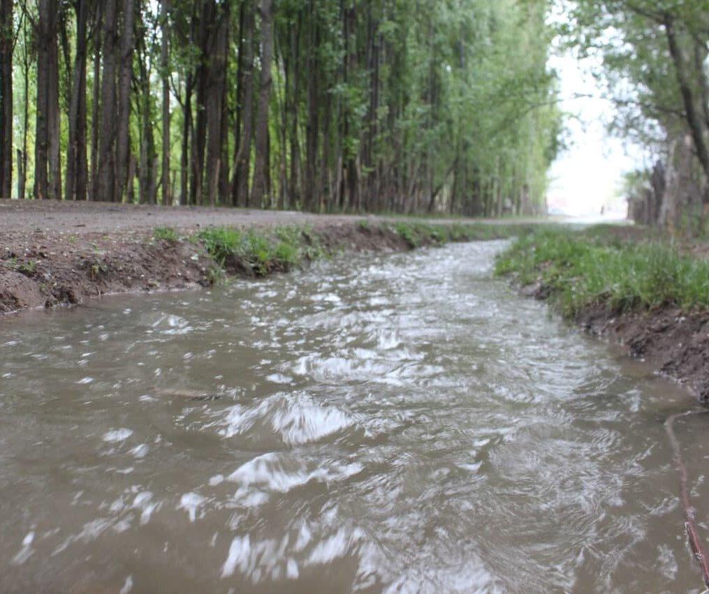 ثبت بیشترین میزان بارندگی زنجان در مرکز شهرستان طارم