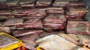 معدومسازی بیش از ۱۸۰ کیلوگرم گوشت منجمد در مسجدسلیمان