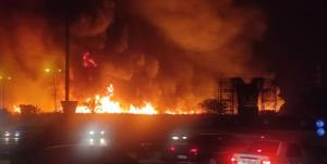 نیزارهای ورودی بوشهر طعمه حریق شد