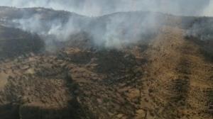 تلاش برای خاموش کردن آتش در ارتفاعات دشتستان ادامه دارد