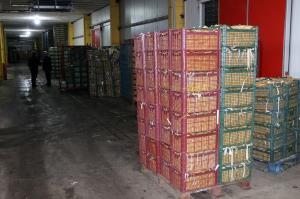 ۱۰۰ درصد سهمیه میوه نوروزی چهارمحالوبختیاری فروخته شد