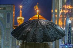 نماهنگ «من کجا باران کجا»