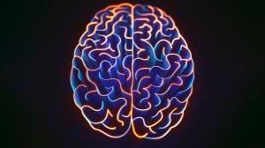 10 نکته جالب درباره مغز