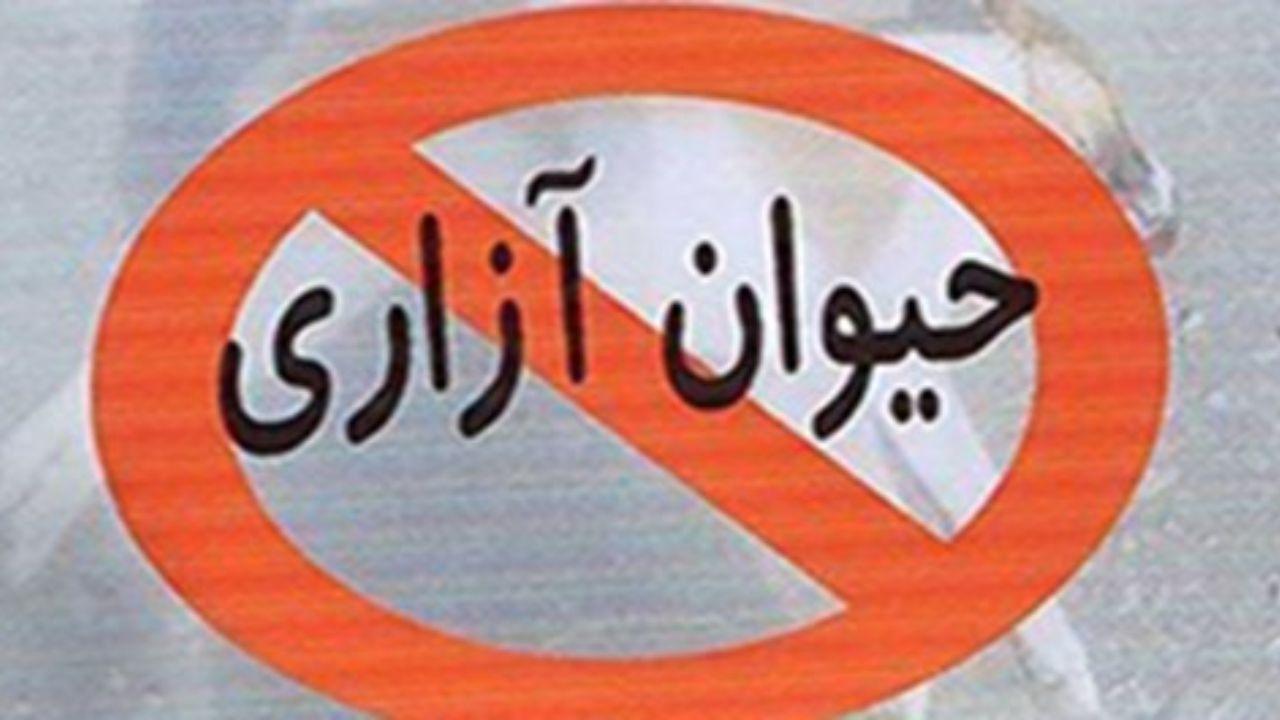 دستگیری عاملان حیوان آزاری در سنقر
