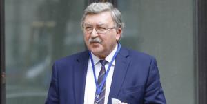 اولیانوف: پیشرفت در مذاکرات وین تا ضربالاجل ۳۱ اردیبهشت دشوار است