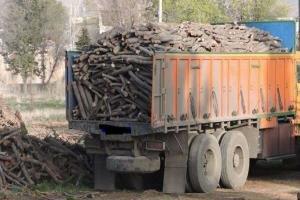 ۱۷ تن چوب قاچاق در بافت کشف شد