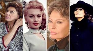 اسکار ایتالیا برگزیدگانش را شناخت؛ سوفیا لورن بهترین بازیگر شد