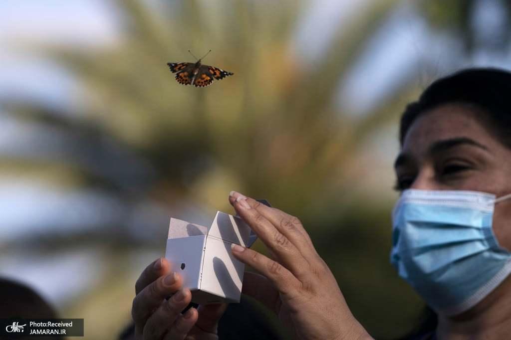 آزاد کردن یک پروانه در مراسمی به منظور بزرگداشت کارکنان بهداشتی در آمریکا