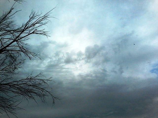 کاهش نسبی دمای هوا در زنجان