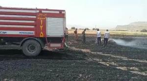 آتشسوزی در مزارع کشاورزی گتوند مهار شد