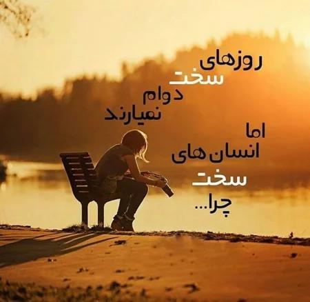 شاید ...