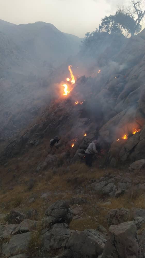 شعله ورشدن دوباره آتش در ارتفاعات باشت