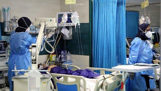 بستری ۴۰۸ بیمار کووید۱۹ در مراکز درمانی زنجان