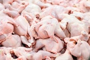تلاش برای تأمین مرغ در شهرستان ارسنجان