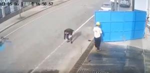 درب کارگاه ساختمانی داشت حادثه میآفرید