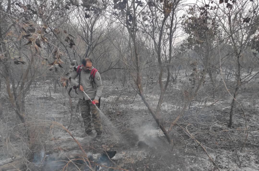 آتشسوزی در ۵۰ هکتار از اراضی پارک ملی دز مهار شد