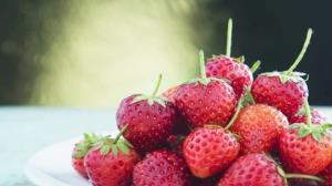 خواص شگفتانگیز توت فرنگی؛ از تنظیم فشار خون تا تقویت سیستم ایمنی بدن