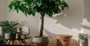 ترفندهای عالی برای شیک تر کردن خانه شما با کمترین هزینه
