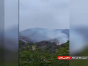 ویدئویی از آتشسوزی جنگلی در کالیفرنیا