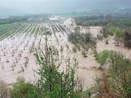 خسارت سیلاب به مزارع و درختان میوه در اردستان