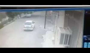 لحظه دزدیدن سگ خانگی در دزفول