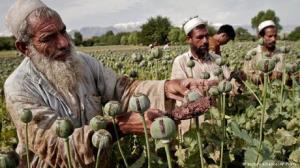 هشدار؛ افزایش قاچاق «شیشه» از افغانستان به ایران