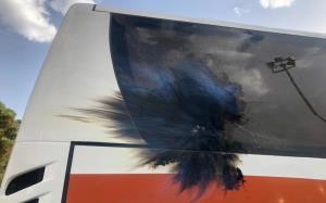 حمید مطهری: راننده اتوبوس پرسپولیس هنرمند بود!