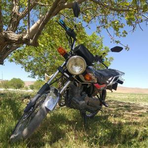 این موتورسیکلت رو ۲۵ سال قبل به این درخت قفل کردن!