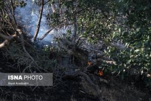 مهار ۲ آتشسوزی در جنگلها و مراتع بویراحمد