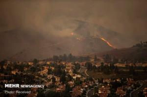 طرح «شناسایی آتشسوزی جنگلها با اینترنت اشیا» اجرا می شود