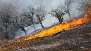 هجوم زبانههای آتش به ارتفاعات منطقه بوستان