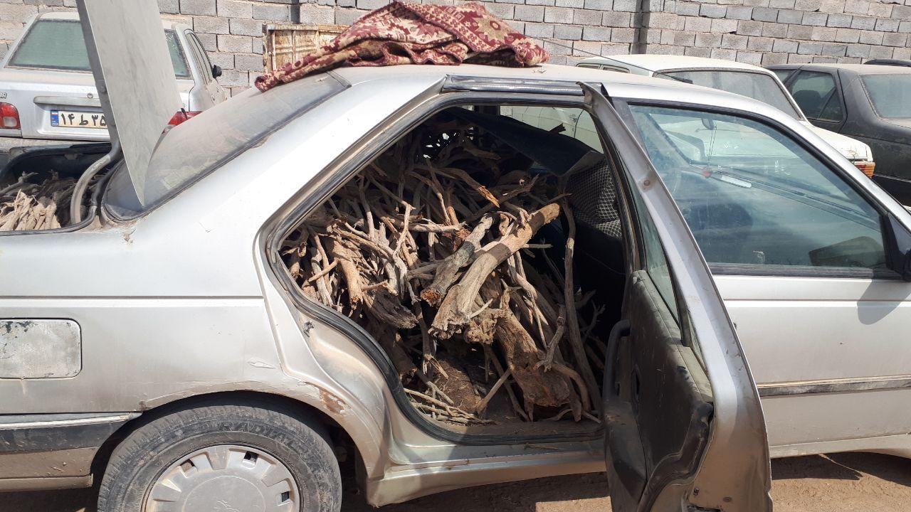زخمی شدن مامور یگان حفاظت منابعطبیعی توسط قاچاقچیان چوب
