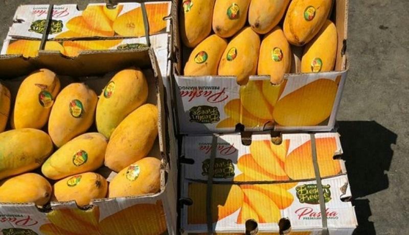 بهای میوههای گرمسیری شکسته شد؛ کاهش قیمت انبه به کیلویی ۳۵ هزار تومان