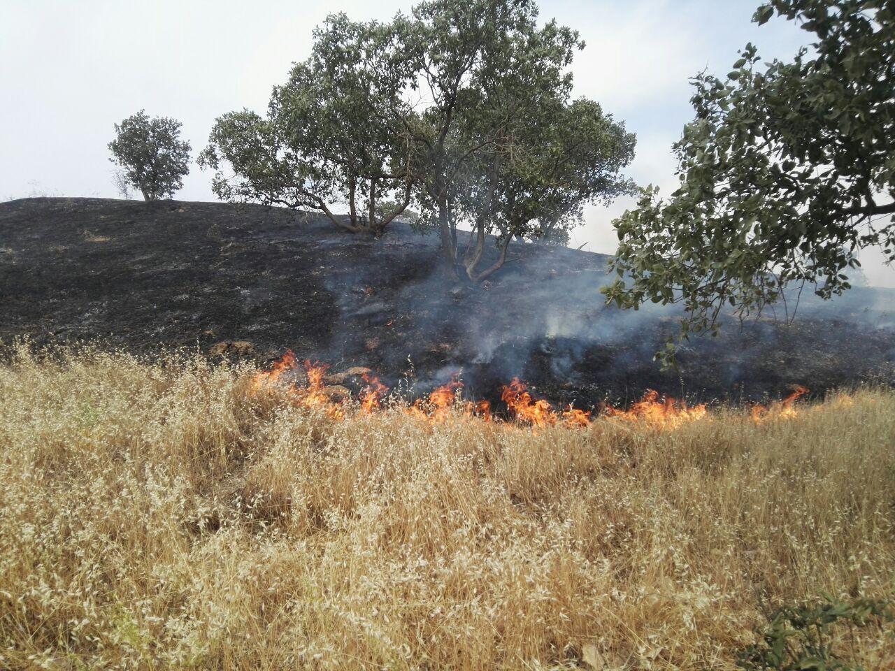 مراتع خوانسار آتش گرفت