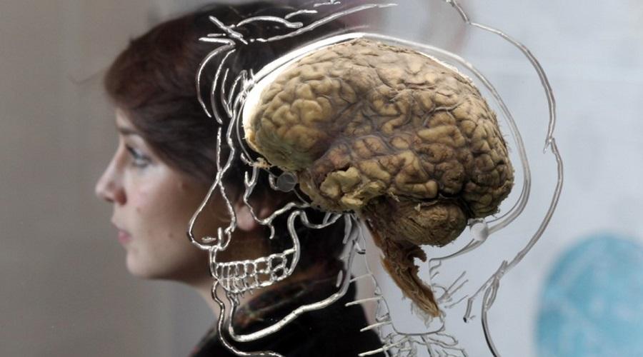 ۷ کاری که نمی دانستید مغز را تغییر می دهد