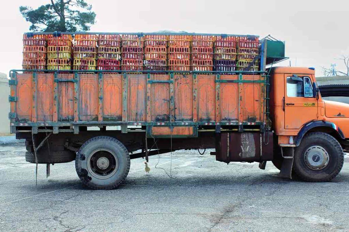 کامیون حامل مرغ قاچاق در بیرجند متوقف شد