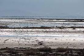 تالابهای فارس کمتر از ۵ درصد آب دارند