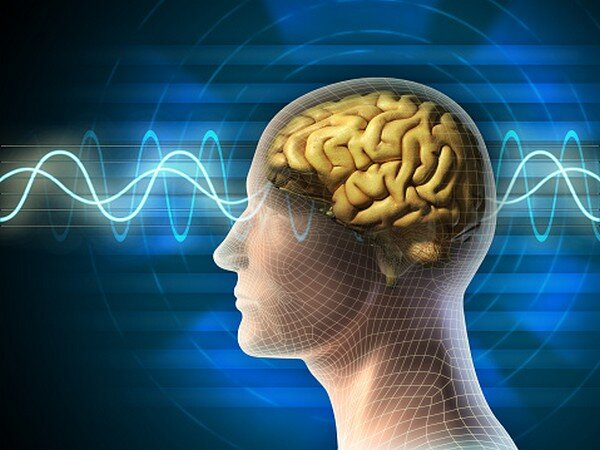 پیشبینی بازیابی مهارتهای زبانی پس از آسیب مغزی با کمک مدلسازی رایانهای