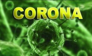 داروی پیشگیری و درمان کرونا با منشأ گیاهی رونمایی شد