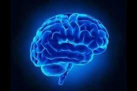 ۷ کاری که نمیدانستید مغز را تغییر میدهد!