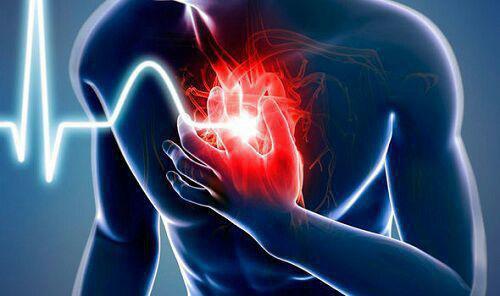 افزایش ۴ برابری مرگ بیماران قلبی به دلیل مراجعه دیرهنگام در فارس