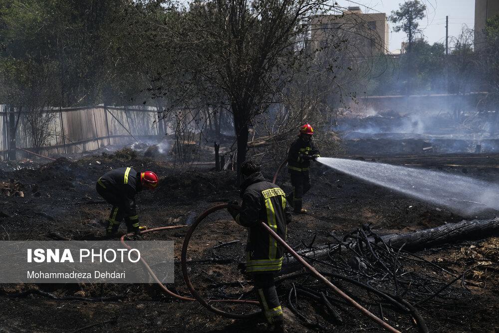 عکس/ آتشسوزی در باغ فرزانه شیراز