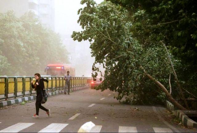 وزش باد شدید در استانهای تهران، البرز و سمنان