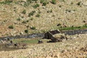 زیباییهای قله «پازن پیر» در دنا